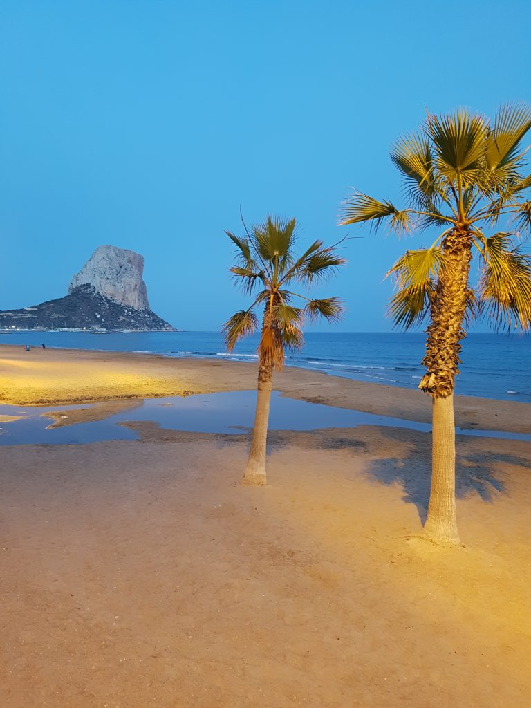 Evening in Calp, palmtrees on the beach